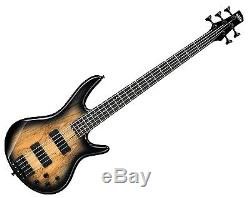 Ibanez GSR205SMNGT 5-String Bass Pack FREE Bag, Stand, Tuner, Cable Gray Burst
