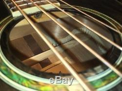Uneartherd Rare Rogue AB-304 TBK Series 2 Acoustic Electric Bass Guitar with Tuner